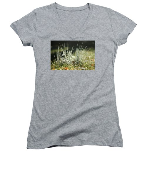 Close-up Of Dew On Grass, In A Sunny, Humid Autumn Morning Women's V-Neck