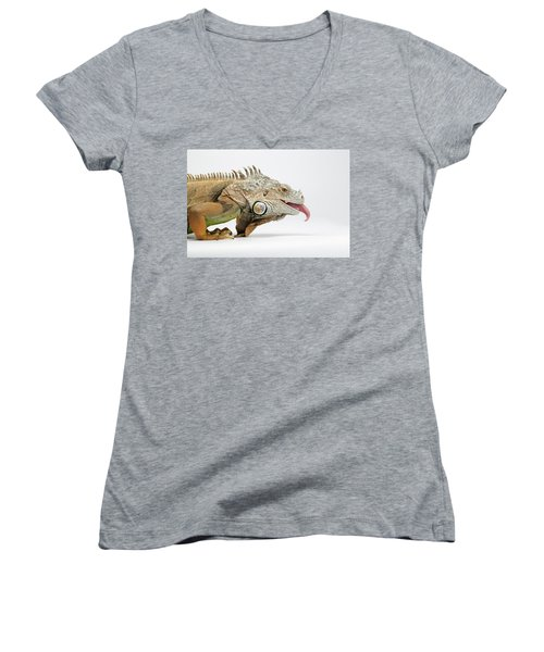 Women's V-Neck featuring the photograph Closeup Green Iguana Showing Tongue On White by Sergey Taran