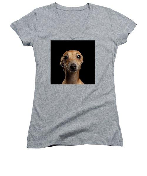 Closeup Portrait Italian Greyhound Dog Looking In Camera Isolated Black Women's V-Neck T-Shirt (Junior Cut) by Sergey Taran