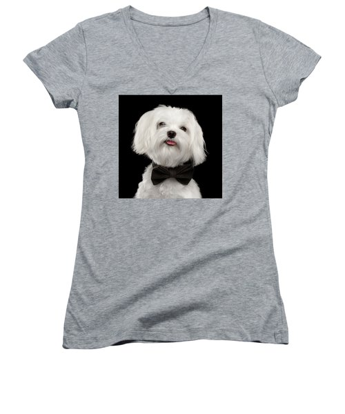 Closeup Portrait Of Happy White Maltese Dog With Bow Looking In Camera Isolated On Black Background Women's V-Neck T-Shirt (Junior Cut) by Sergey Taran