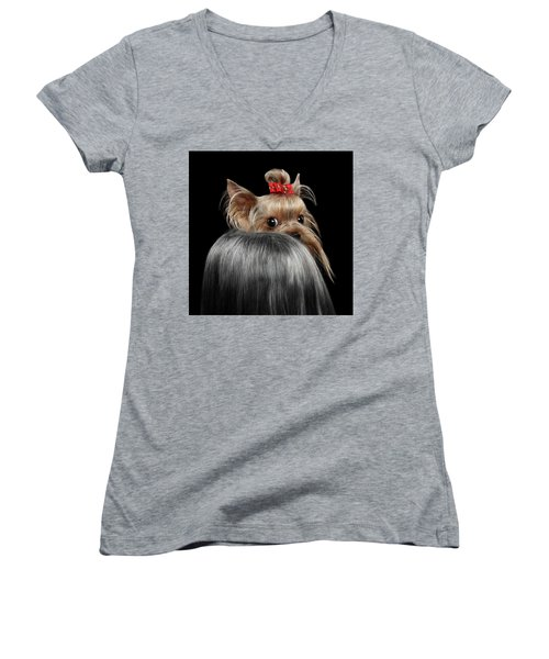 Closeup Yorkshire Terrier Dog, Long Groomed Hair Pity Looking Back Women's V-Neck (Athletic Fit)