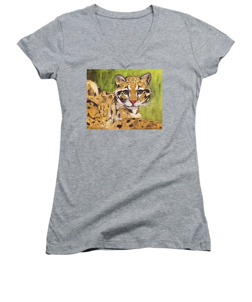 Women's V-Neck T-Shirt featuring the painting Clouded Cat by Jamie Frier