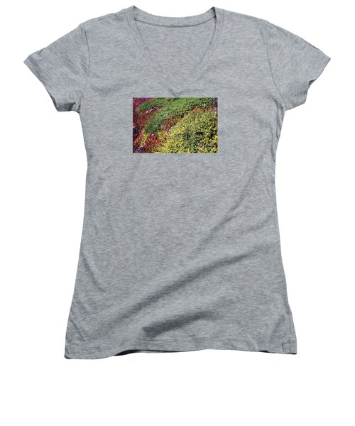 Coastal Flowers And Ice Plant Women's V-Neck T-Shirt