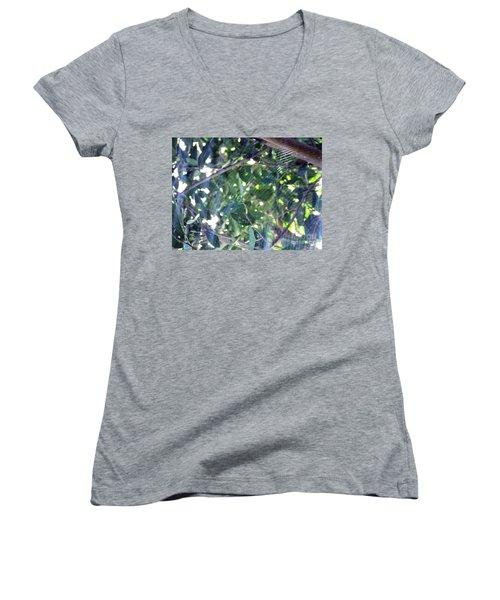 Women's V-Neck T-Shirt (Junior Cut) featuring the photograph Cobweb Tree by Megan Dirsa-DuBois