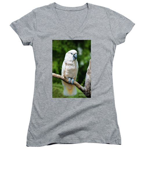 Cockatoo Women's V-Neck (Athletic Fit)