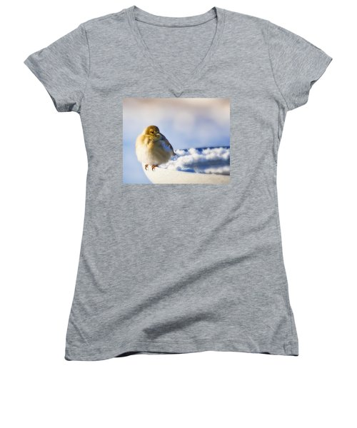 Cold American Goldfinch Women's V-Neck