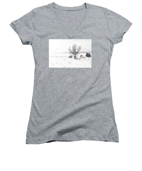 Cold Loneliness Women's V-Neck