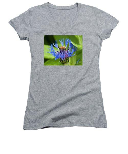Collecting Pollen Women's V-Neck T-Shirt