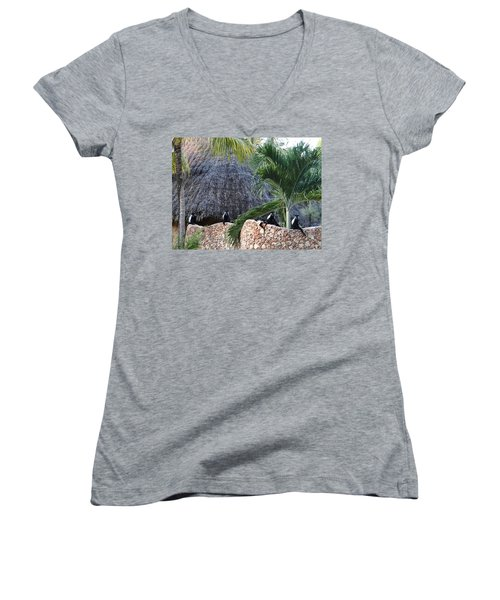 Colobus Monkey Resting On A Wall Women's V-Neck (Athletic Fit)
