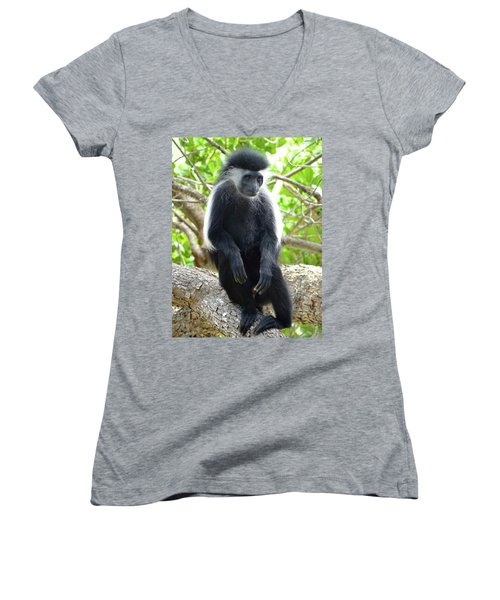 Colobus Monkey Sitting In A Tree 2 Women's V-Neck (Athletic Fit)