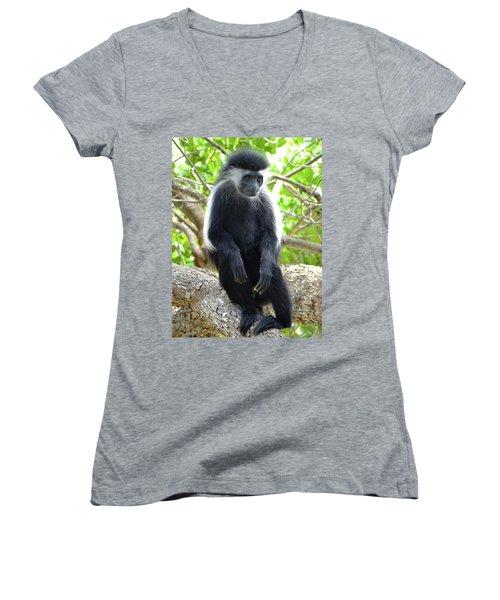 Colobus Monkey Sitting In A Tree 2 Women's V-Neck