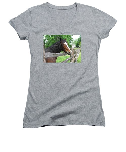Colonial Horse Women's V-Neck T-Shirt