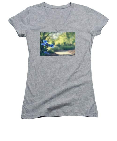 Color Me Blue Women's V-Neck T-Shirt