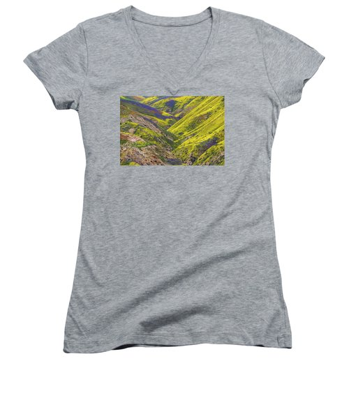 Women's V-Neck T-Shirt (Junior Cut) featuring the photograph Color Valley by Peter Tellone