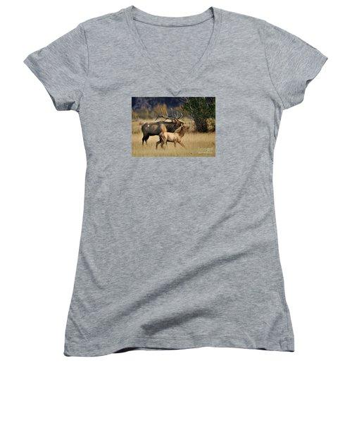 Colorado Elk  Women's V-Neck T-Shirt (Junior Cut) by Nava Thompson