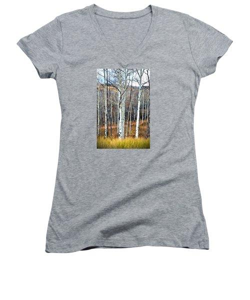 Women's V-Neck T-Shirt (Junior Cut) featuring the photograph Colorado Fall Aspen by James Steele