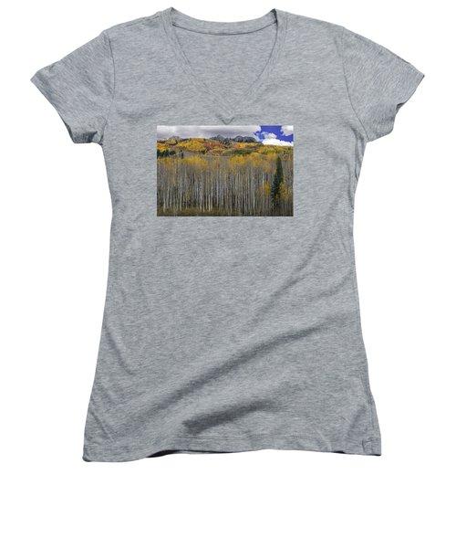 Colorado Splendor Women's V-Neck T-Shirt (Junior Cut) by Gary Lengyel
