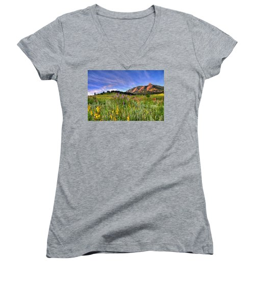 Colorado Wildflowers Women's V-Neck T-Shirt