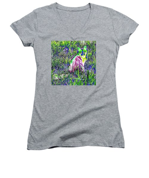 Colorful Kitty Women's V-Neck