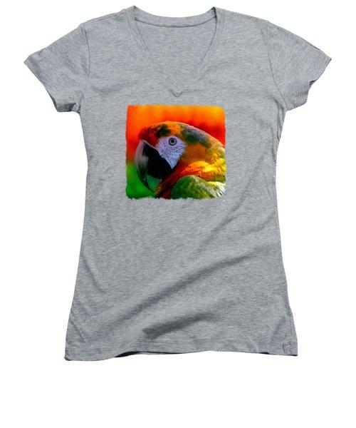 Colorful Macaw Parrot Women's V-Neck T-Shirt (Junior Cut) by Linda Koelbel