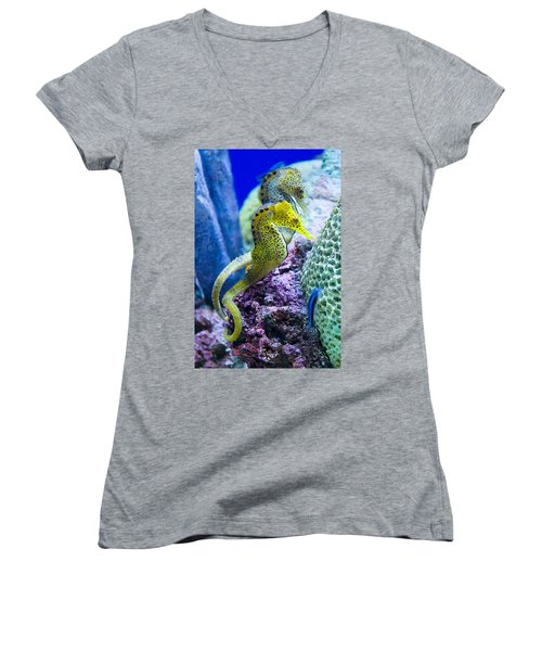 Colorful Seahorses Women's V-Neck (Athletic Fit)