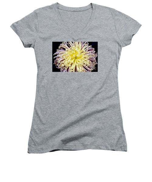 Colorful Spider Chrysanthemum   Women's V-Neck (Athletic Fit)