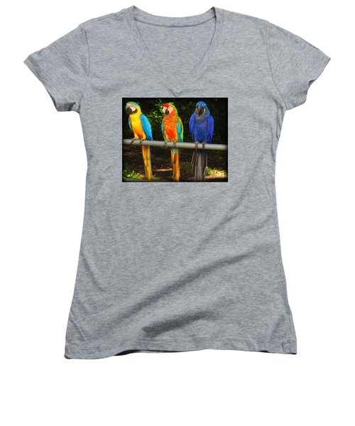 Colorful Trio Women's V-Neck (Athletic Fit)