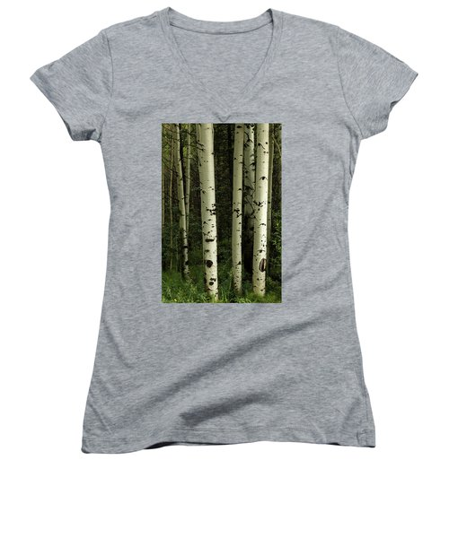 Women's V-Neck T-Shirt featuring the photograph Colors And Texture Of A Forest Portrait by James BO Insogna