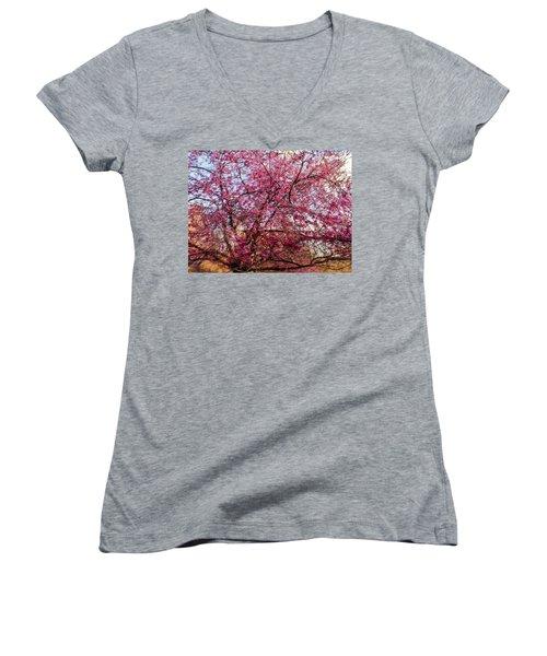 Columnar Sargent Cherry 1 Women's V-Neck T-Shirt (Junior Cut) by Bernhart Hochleitner