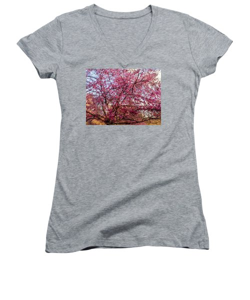Columnar Sargent Cherry 1 Women's V-Neck