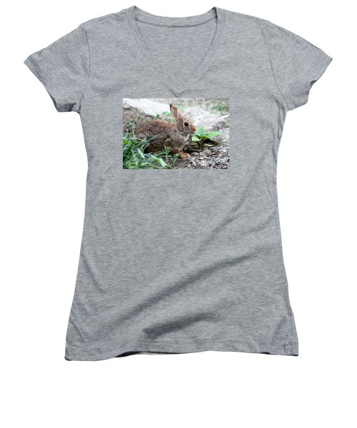 Women's V-Neck T-Shirt (Junior Cut) featuring the photograph Coming Out Of Hiding by Sheila Brown