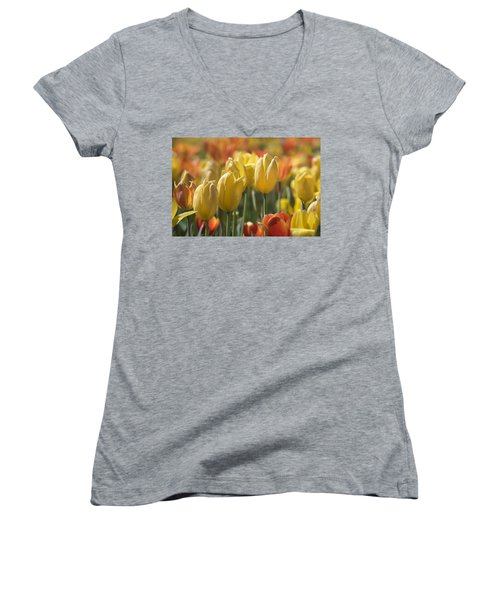 Coming Up Tulips Women's V-Neck T-Shirt