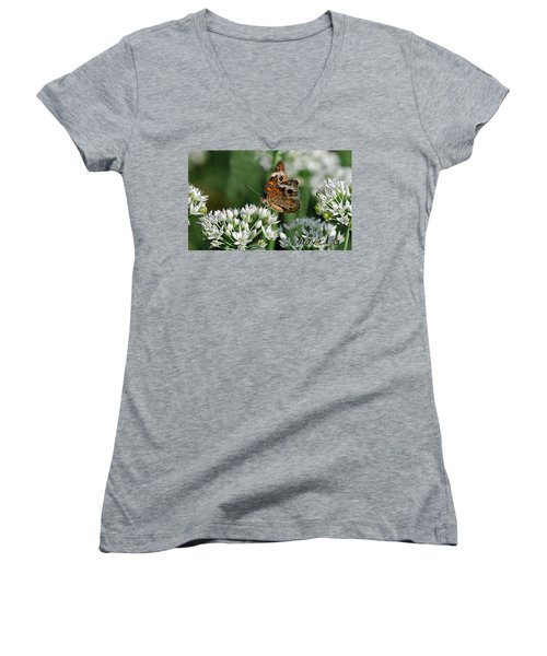 Common Buckeye Butterfly Women's V-Neck T-Shirt (Junior Cut) by Diane Giurco