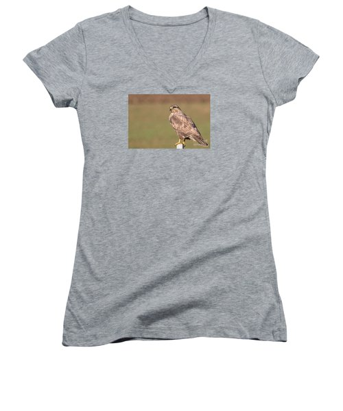 Women's V-Neck T-Shirt (Junior Cut) featuring the photograph Common Buzzard Along The Highway Nis Budapest by Jivko Nakev