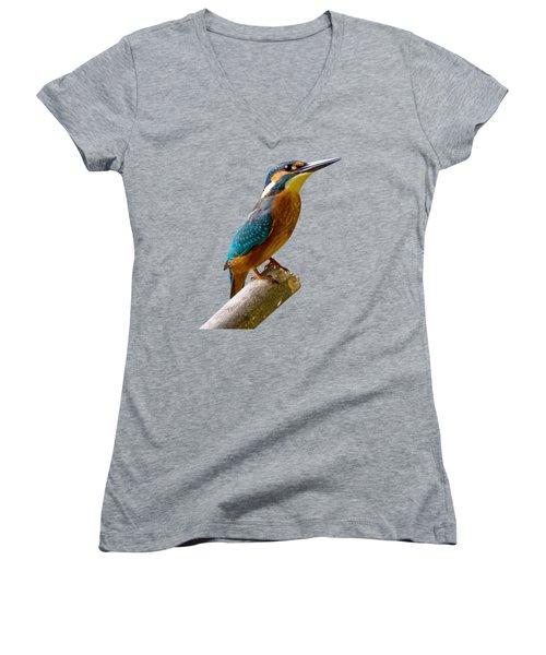 Common Kingfisher Alcedo Atthis Women's V-Neck