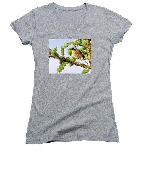 Common Yellow-throat Women's V-Neck T-Shirt