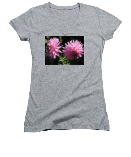 Companions Women's V-Neck T-Shirt