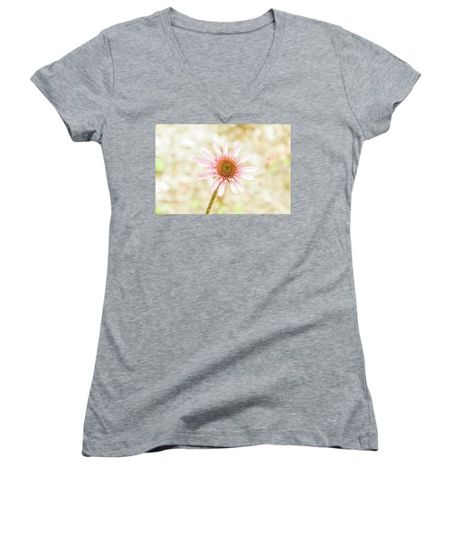 Cone Flower Women's V-Neck T-Shirt