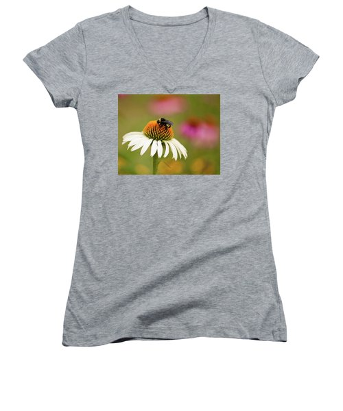 Coneflower And Bee Women's V-Neck T-Shirt (Junior Cut) by Phyllis Peterson