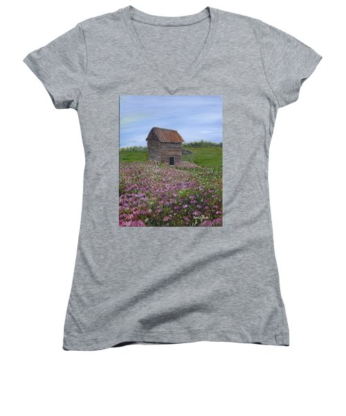 Coneflowers Women's V-Neck T-Shirt