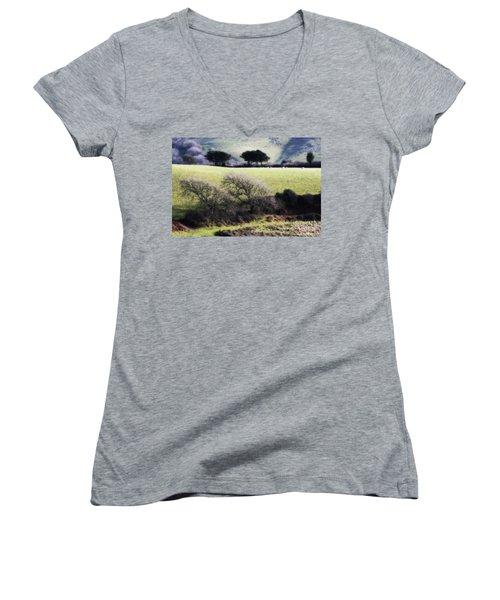 Contrast Of Trees Women's V-Neck T-Shirt (Junior Cut) by Gary Bridger