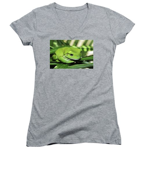 Cool Green Frog 001 Women's V-Neck T-Shirt (Junior Cut) by Kevin Chippindall