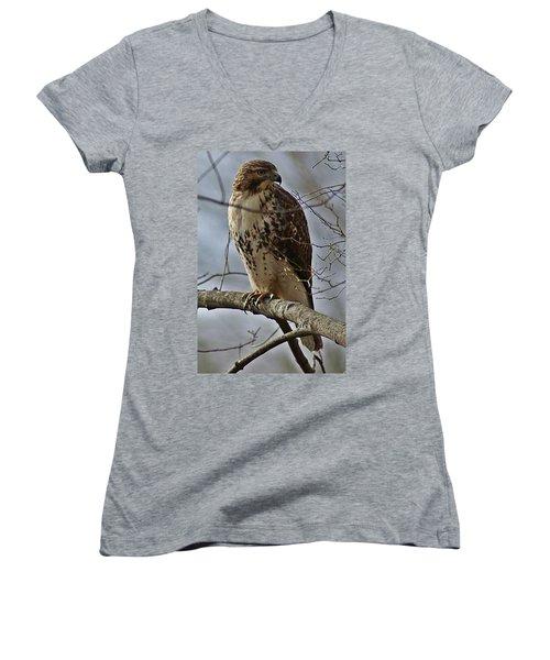 Cooper's Hawk 2 Women's V-Neck T-Shirt