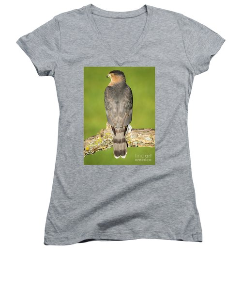 Cooper's Hawk In The Backyard Women's V-Neck