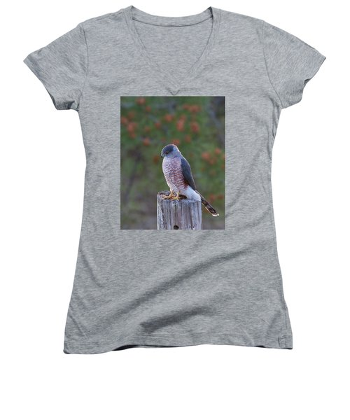 Coopers Hawk Perched Women's V-Neck