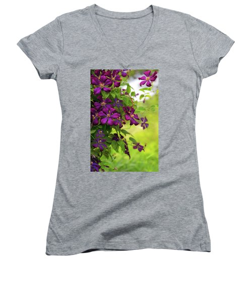 Copious Clematis Women's V-Neck