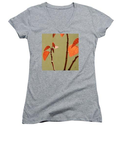 Copper Plant 2 Women's V-Neck T-Shirt (Junior Cut) by Ben and Raisa Gertsberg