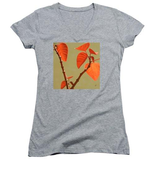 Copper Plant Women's V-Neck