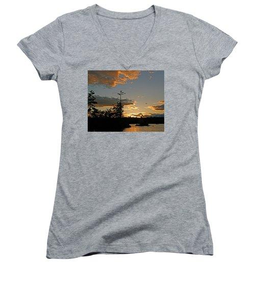 Women's V-Neck T-Shirt (Junior Cut) featuring the photograph Cormorant Tree by Lynda Lehmann