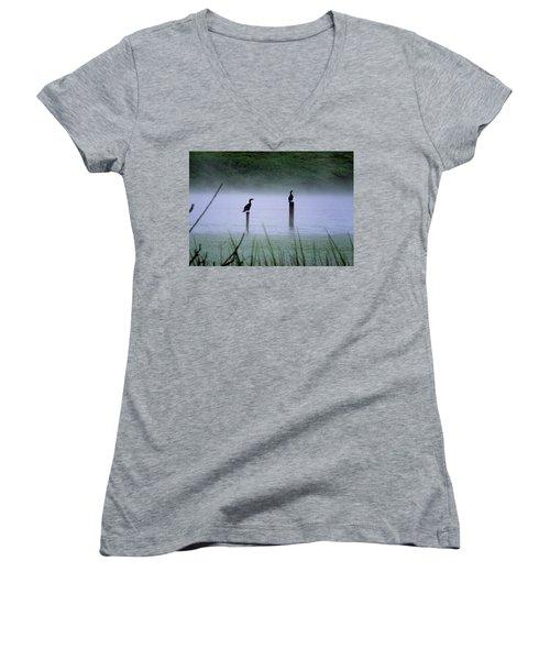 Cormorants Women's V-Neck T-Shirt